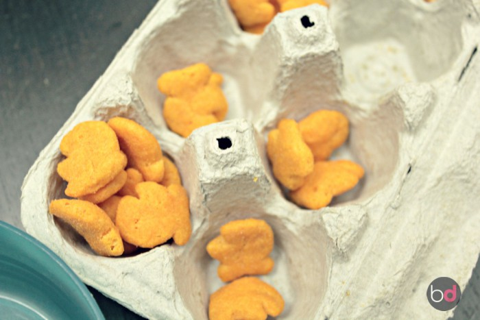 #GoldfishTales